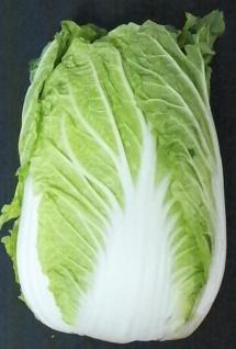 白菜1.png